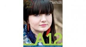 """Kū var skaiteit jaunajā """"A12"""" numerī"""