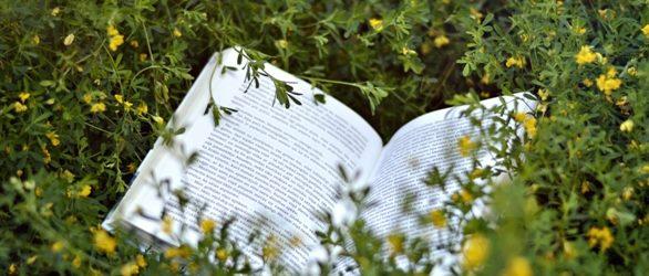 Izsludynuots P. Jurciņa jubilejam veļteits jaunūs literatu konkurss