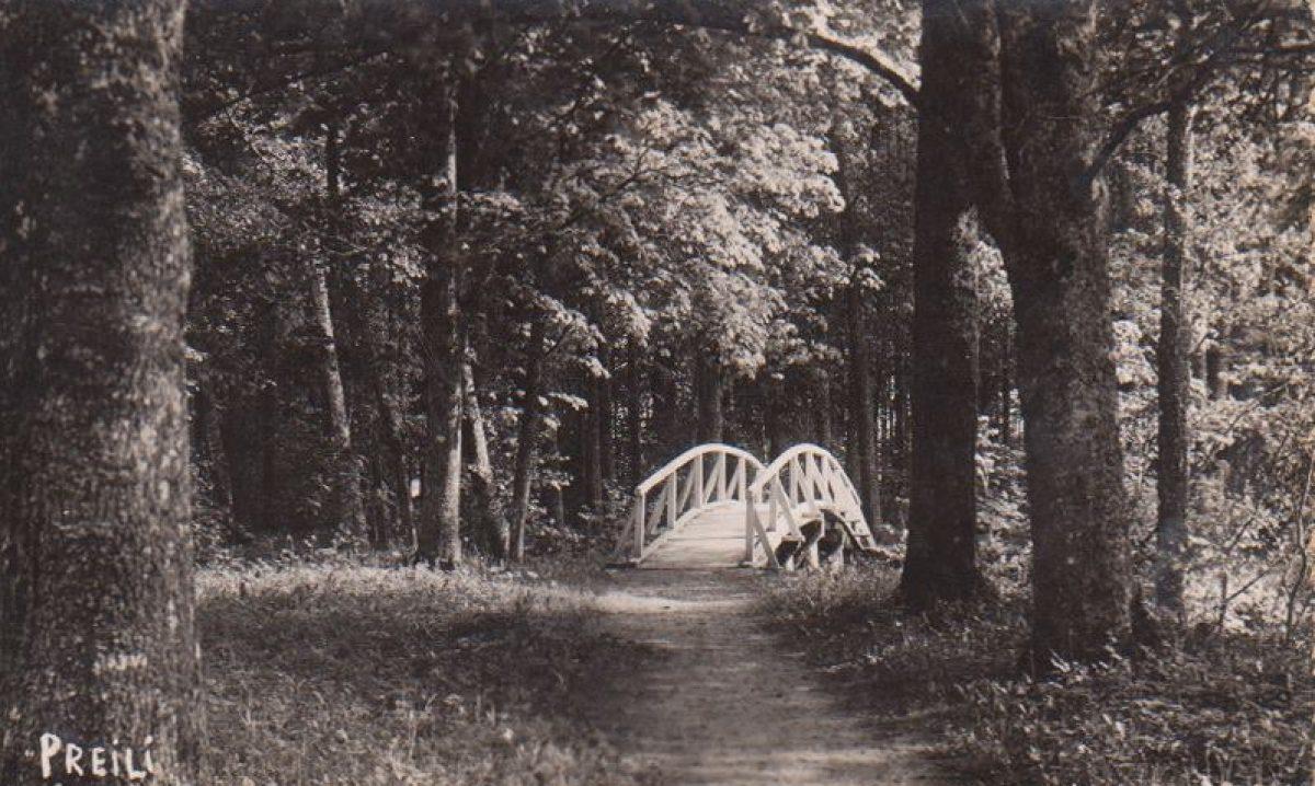 Preiļu parks – grafu Borhu grezneibys atspulgs