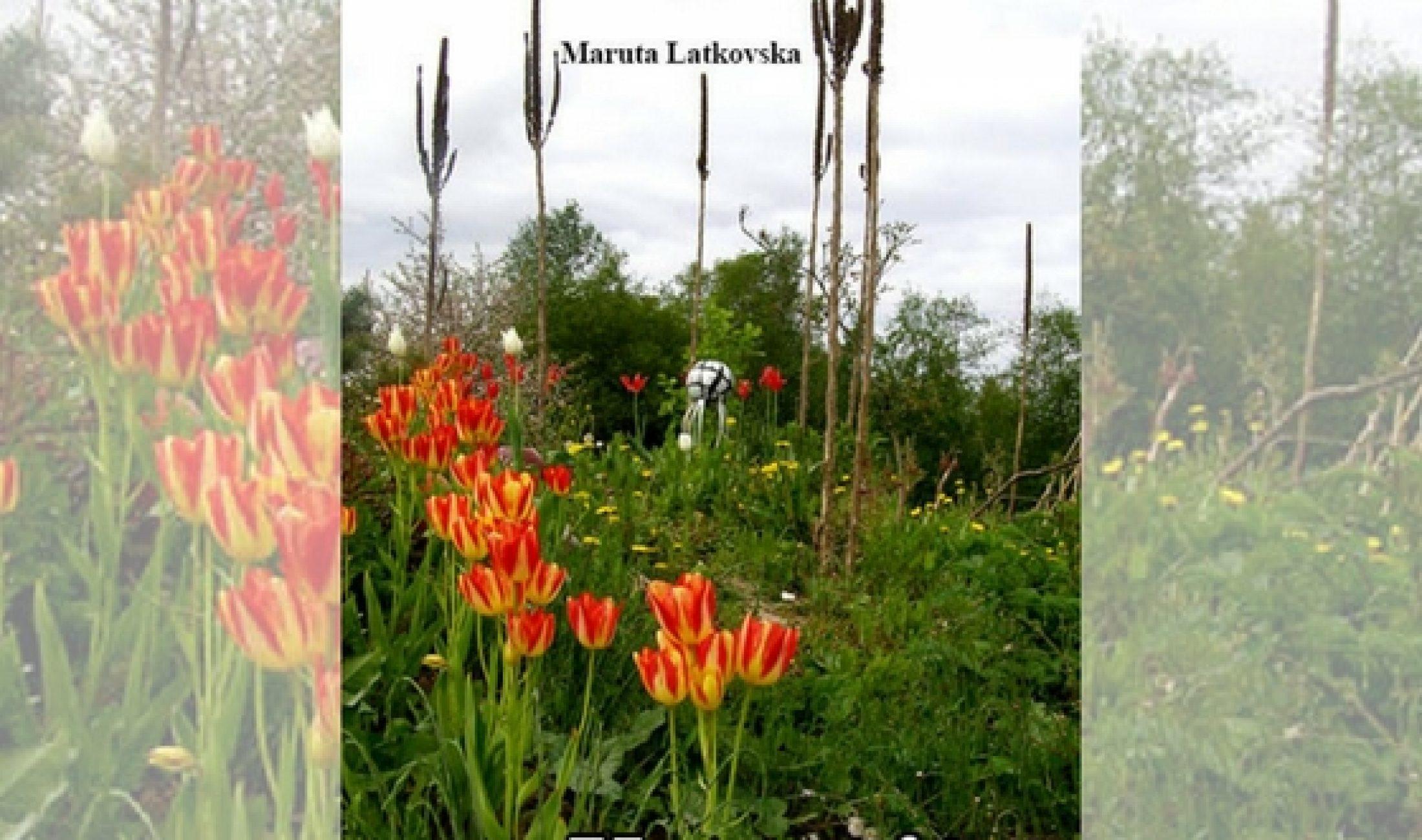 Maruta Latkovska gruomotā apkūpuojuse atmiņu i puordūmu zibšņus