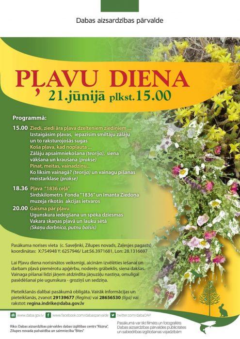 Pļovu dīna @ Saveļniki, Zalesjis pogosts, Zylupis nūvods | Savelinki | Latvia
